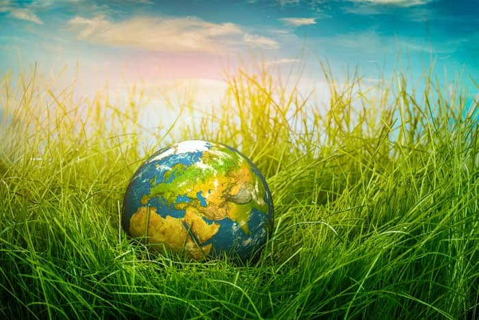 Environmental Issues and Their Impact on Business